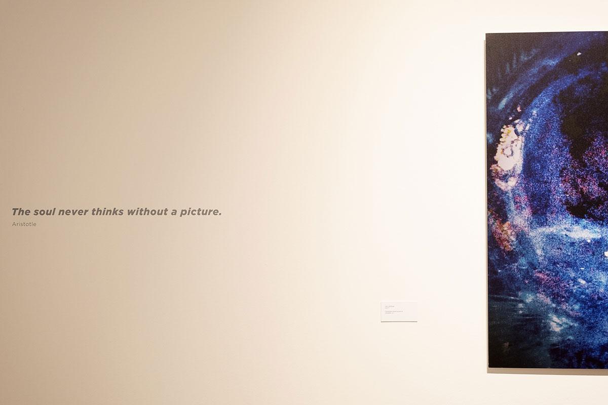 Clara-Afonso-artista-plástica-exposição-
