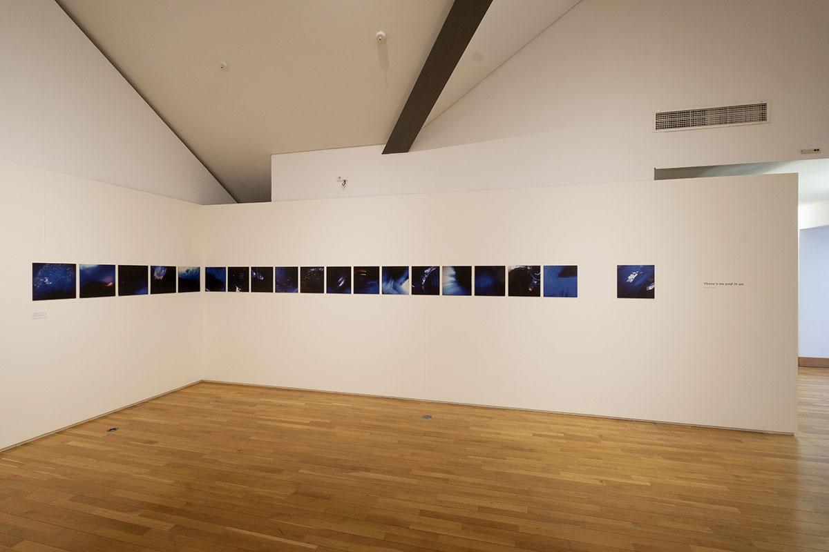 Clara-Afonso--artista-plástica-exposição3-